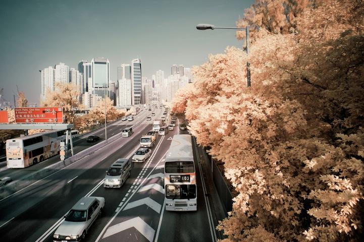 the_tree_mag-photographs-by-yiu-yu-hoi-180.jpg