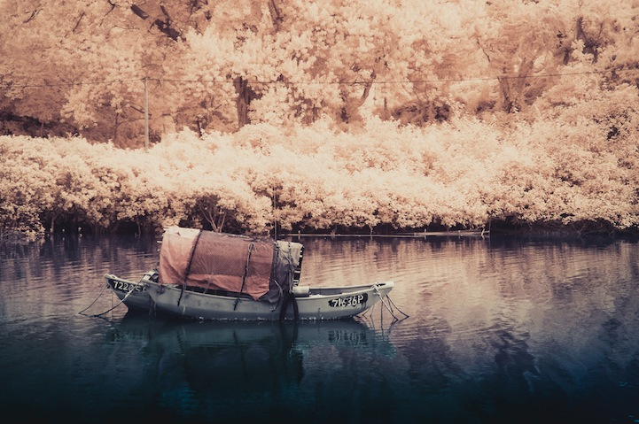 the_tree_mag-photographs-by-yiu-yu-hoi-190.jpg