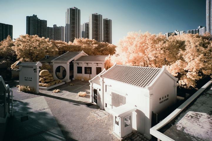 the_tree_mag-photographs-by-yiu-yu-hoi-210.jpg