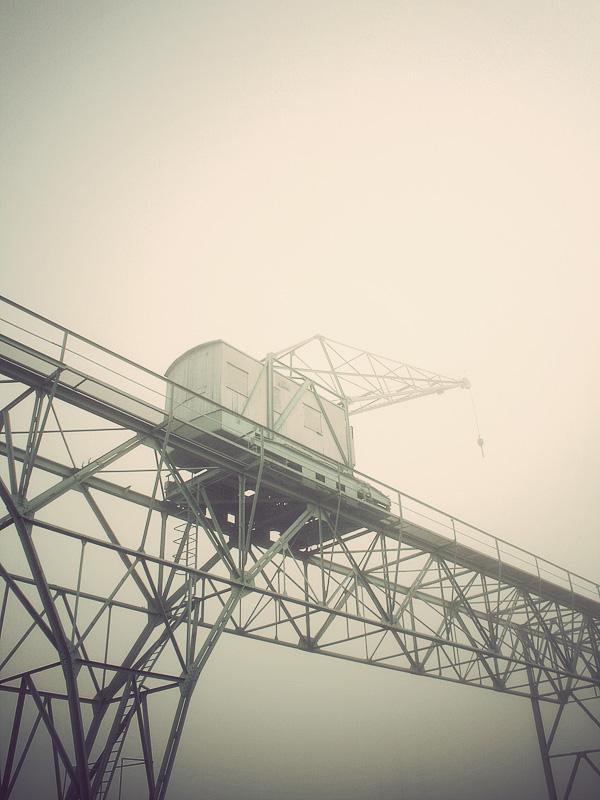 Crane  2008