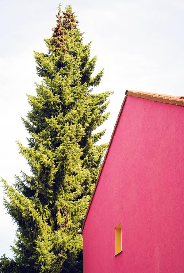 the_tree_mag-photographs-by-matthias-heiderich-240.jpg