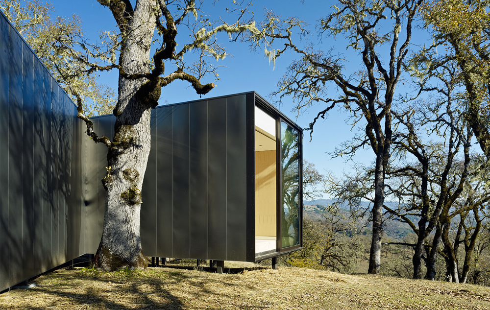 the_tree_mag-moose-road-house-by-mork-ulnes-architects-70.jpg