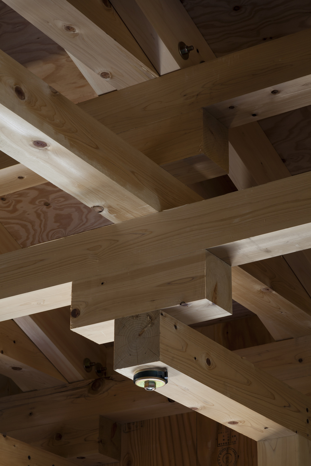 the_tree_mag-archery-hall-and-boxing-club-by-ft-architects-120.jpg