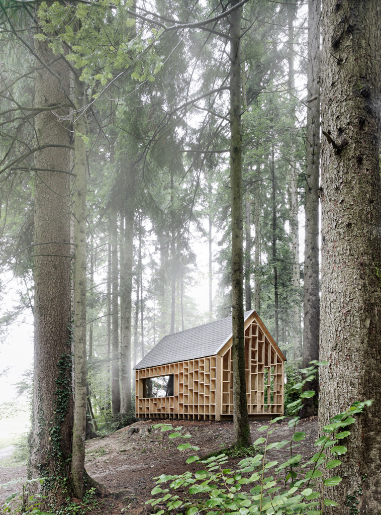 the-tree-mag_house-of-the-forest-owls-by-bernd-riegger-40.jpg
