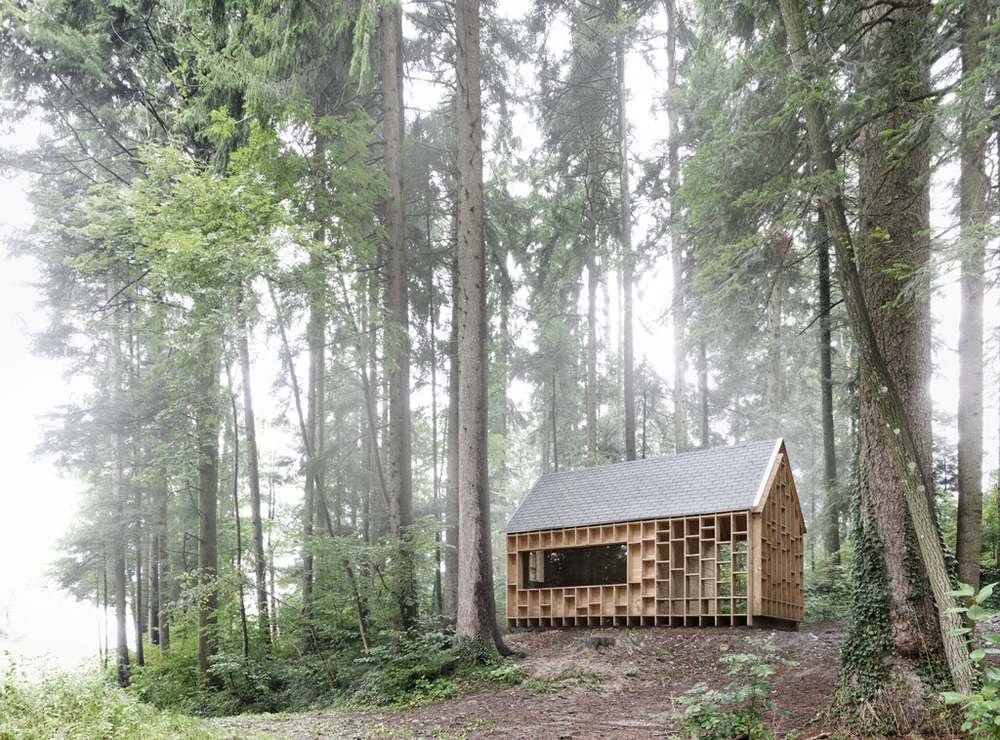 the-tree-mag_house-of-the-forest-owls-by-bernd-riegger-10.jpg