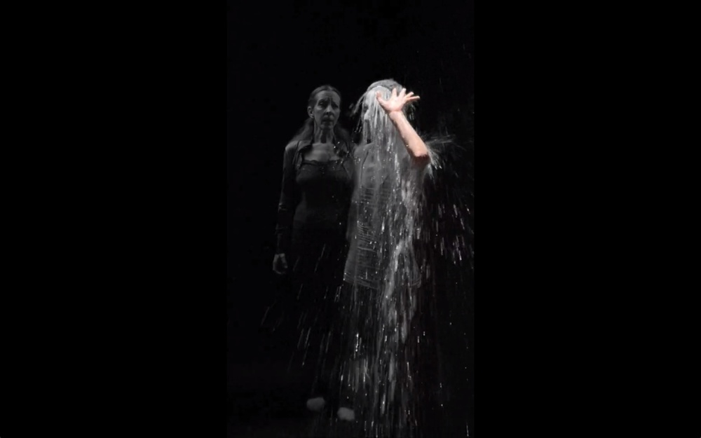 the-tree-mag_two-women-by-bill-viola-40.jpeg