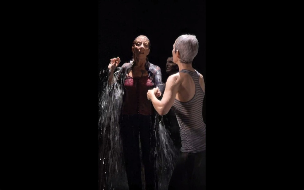 the-tree-mag_two-women-by-bill-viola-100.jpeg