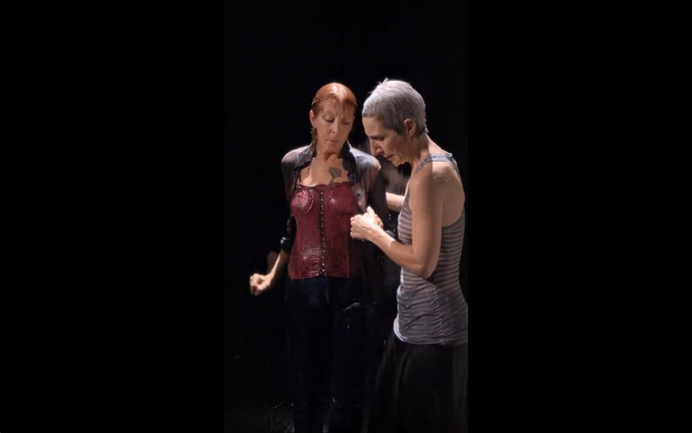 the-tree-mag_two-women-by-bill-viola-120.jpeg