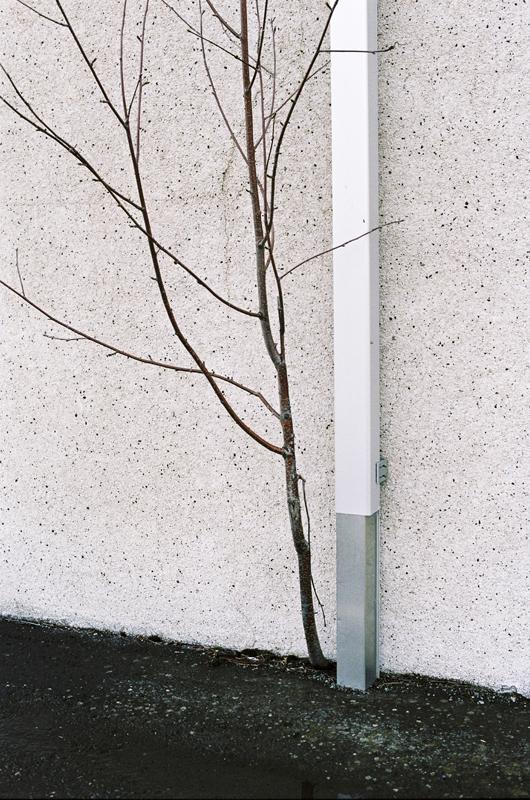 the-tree-mag_photographs-of-jean-baptiste-sinniger-230.JPG