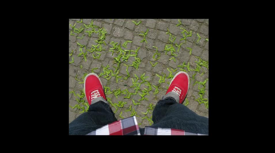 the-tree-mag_an-instagram-short-film-by-thomas-jullien-20.jpg