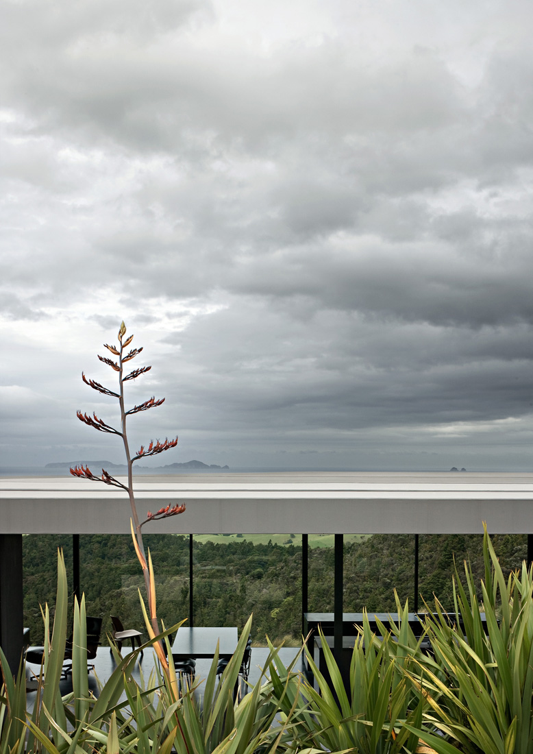 the-tree-mag_sandy-bay-road-house-by-fearon-hay-architects-100.jpg