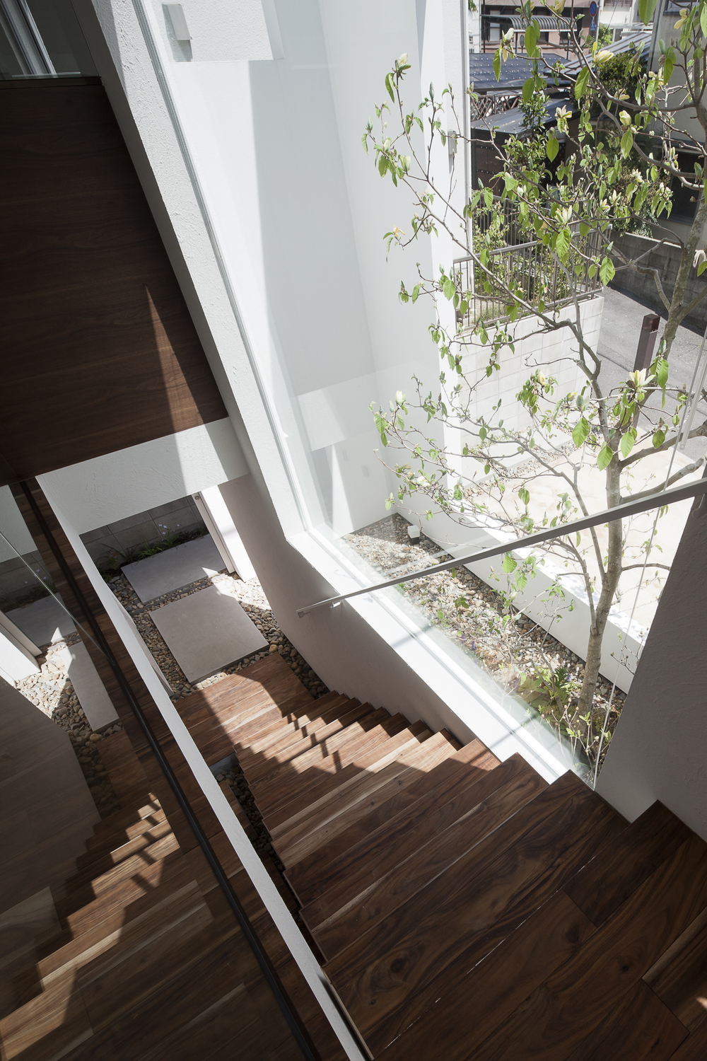 the-tree-mag-frame-by-uid-architects-30.jpg