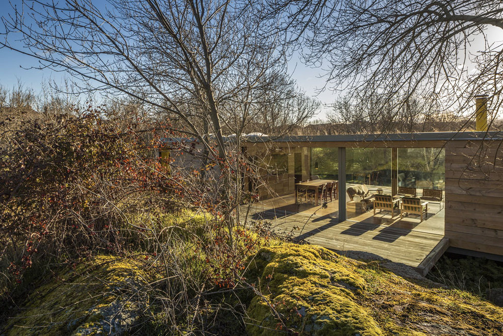 the-tree-mag-casa-4-estaciones-by-chqs-arquitectos-240.jpg