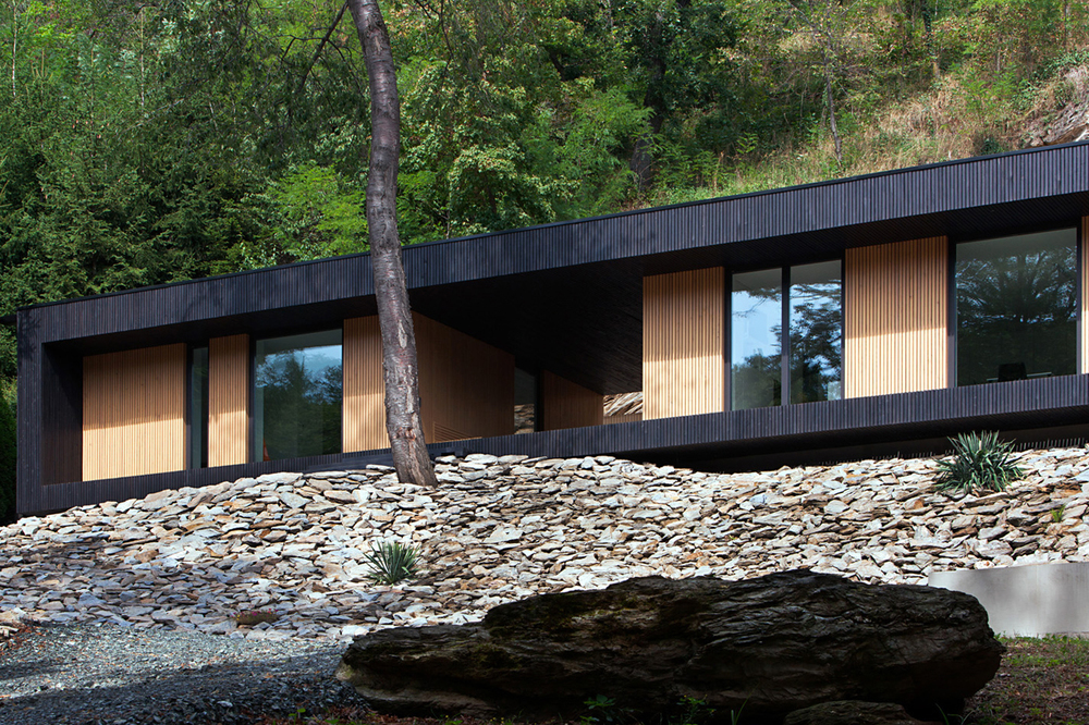 the tree mag hideg-house-by-bres-architects-20.jpg