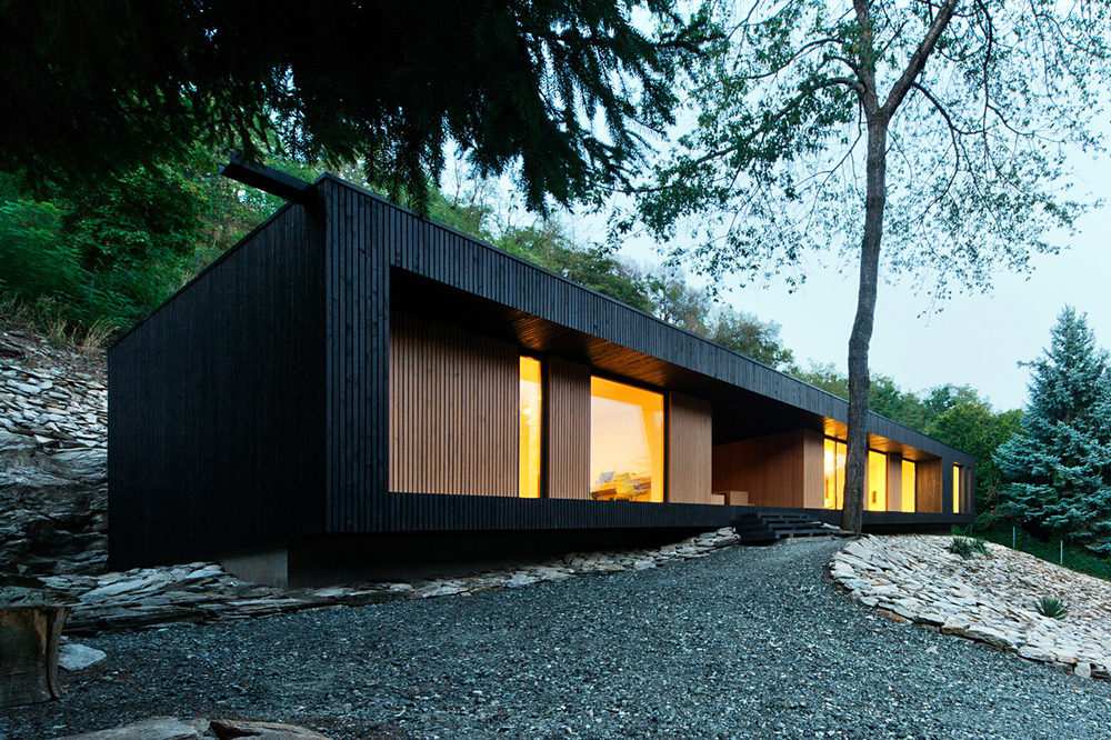 the tree mag hideg-house-by-bres-architects-10.jpg
