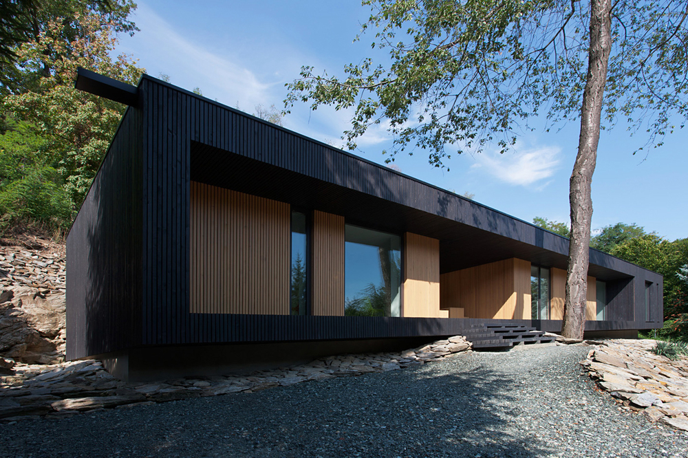 the tree mag hideg-house-by-bres-architects-70.jpg
