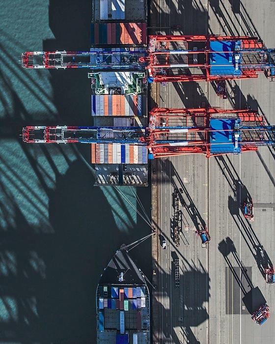 the tree mag aerial-views-by-bernhard-lang-80.jpg