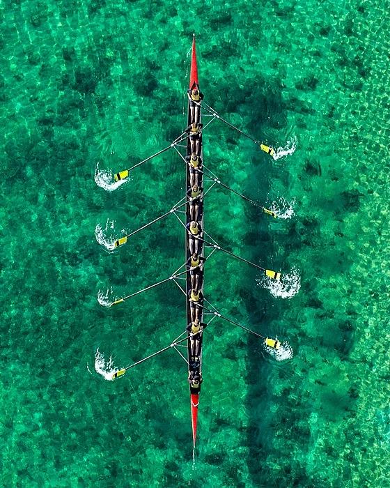 the tree mag aerial-views-by-bernhard-lang-140.jpg
