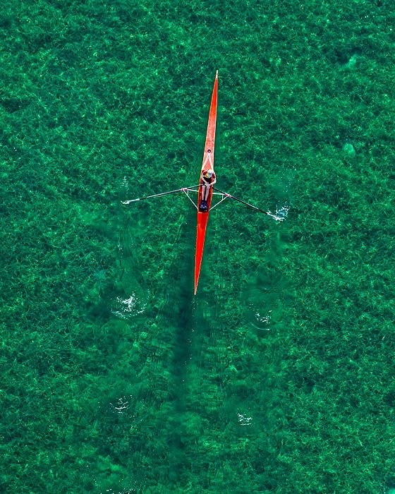 the tree mag aerial-views-by-bernhard-lang-160.jpg