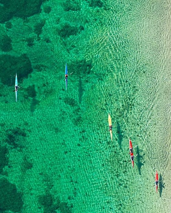 the tree mag aerial-views-by-bernhard-lang-170.jpg