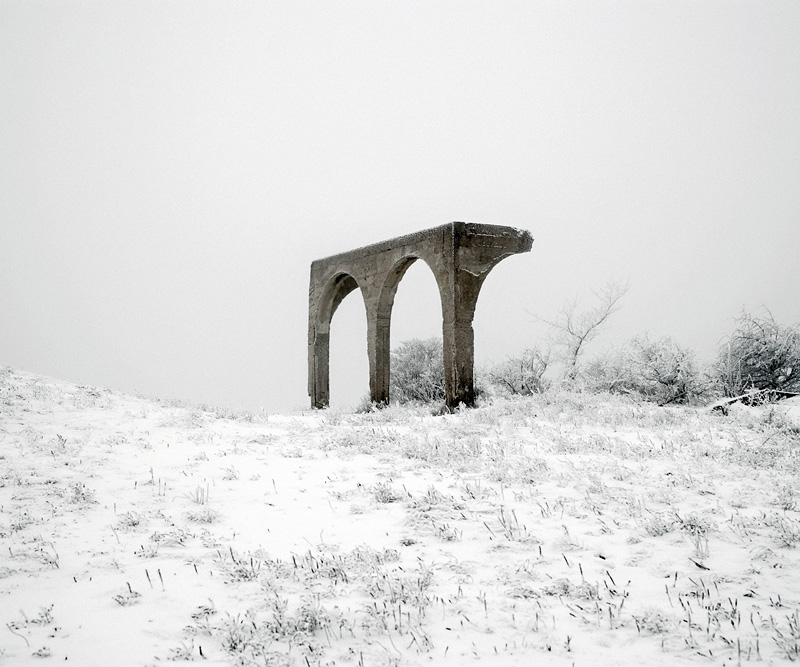 the tree mag here-anywhere-by-tamas-dezso-180.jpg