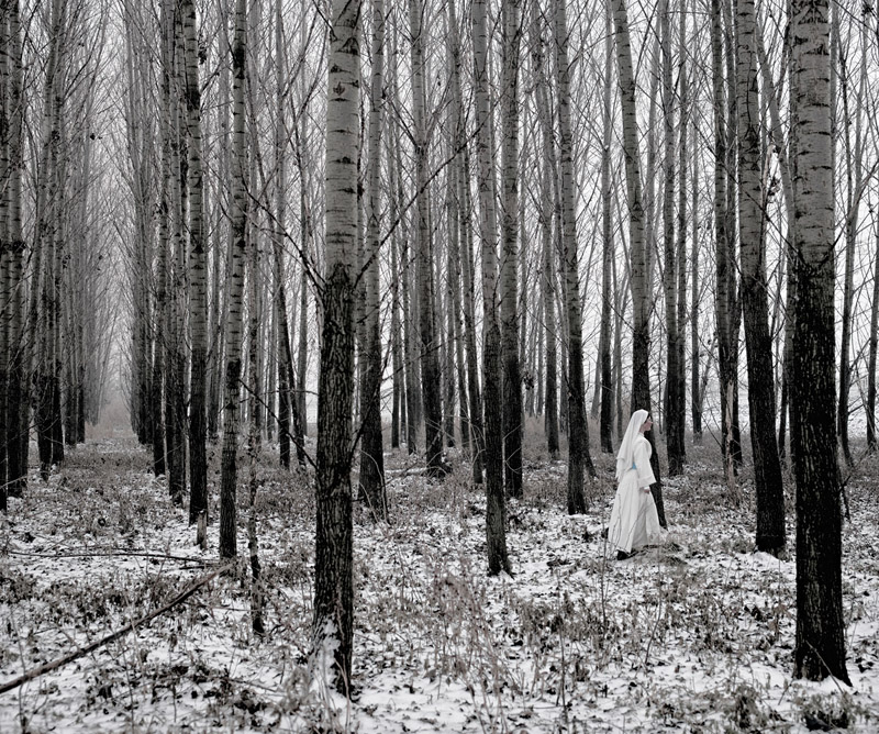 the tree mag here-anywhere-by-tamas-dezso-170.jpg