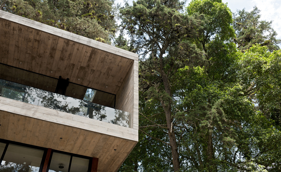the-tree-mag Casa Corallo by PAZ Arquitectura-10.jpg