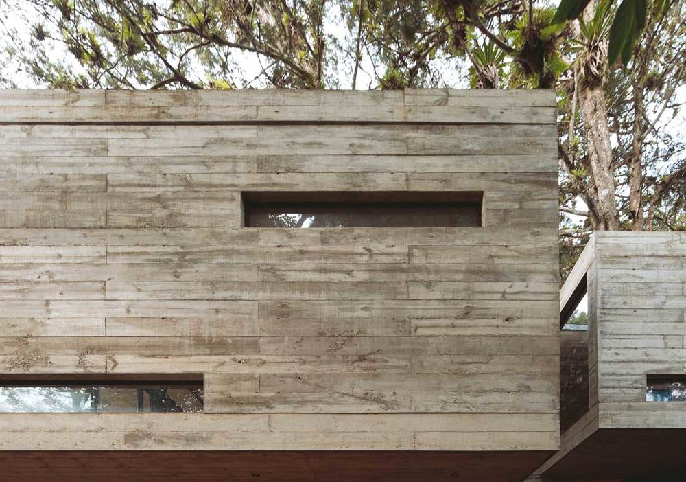 the-tree-mag Casa Corallo by PAZ Arquitectura-55.jpg