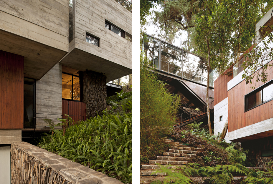 the-tree-mag Casa Corallo by PAZ Arquitectura-110.jpg
