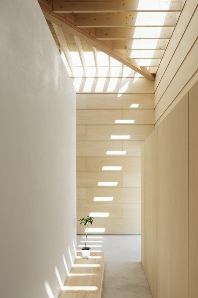 the-tree-mag Light Walls House by mA-style Architects 30.jpg