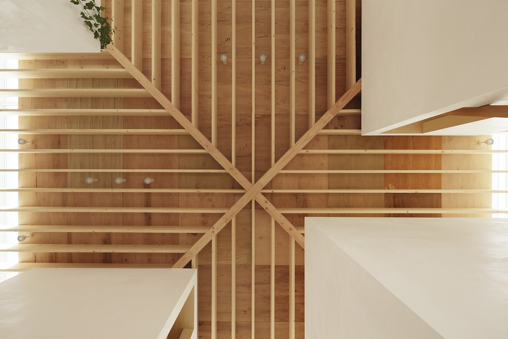 the-tree-mag Light Walls House by mA-style Architects 140.jpg