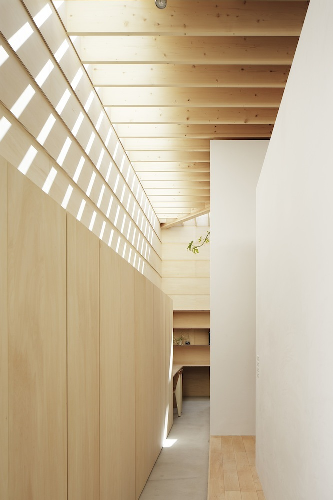 the-tree-mag Light Walls House by mA-style Architects 160.jpg