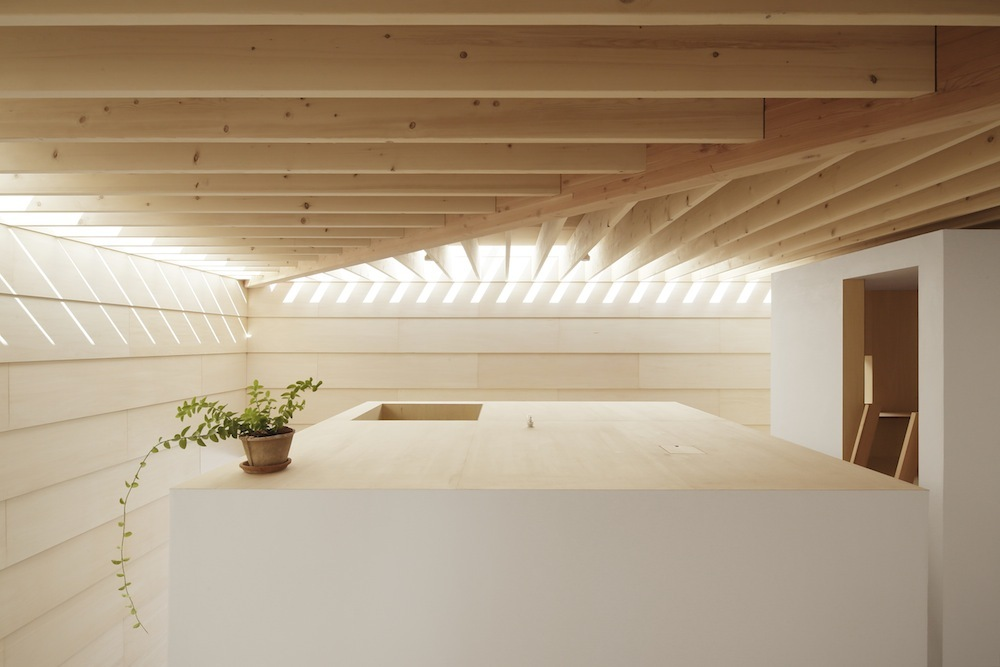 the-tree-mag Light Walls House by mA-style Architects 200.jpg