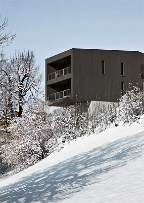 the-tree-mag-house-in-rehetobel-by-jean-claude-vuagniaux-30.jpg