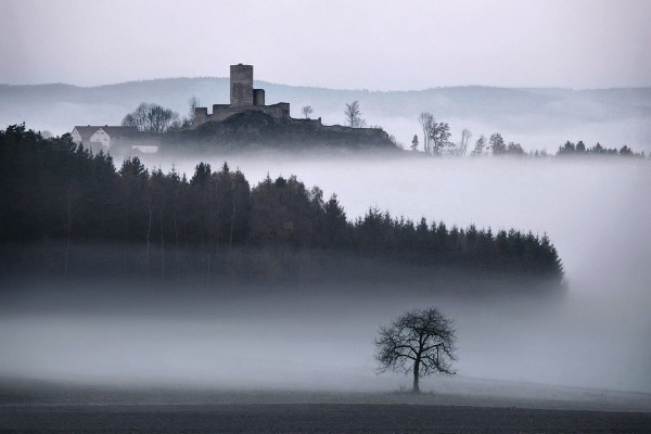 the-tree-mag-brothers-grimms-homeland-by-kilian-schnberger-100.jpg