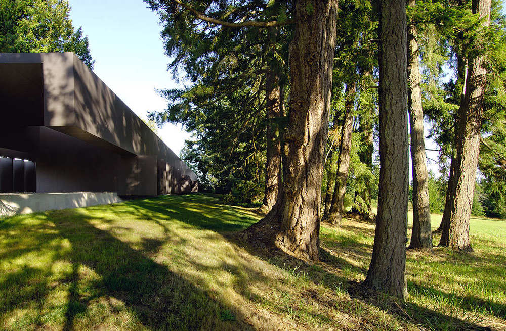 the-tree-mag-linear-house-by-patkau-architects-30.jpg