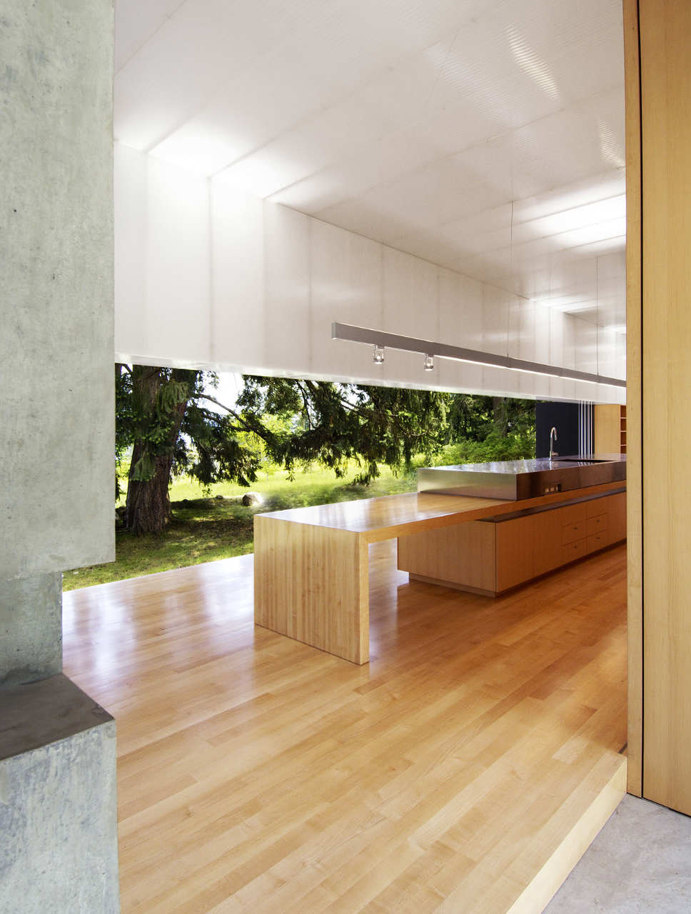 the-tree-mag-linear-house-by-patkau-architects-70.jpg