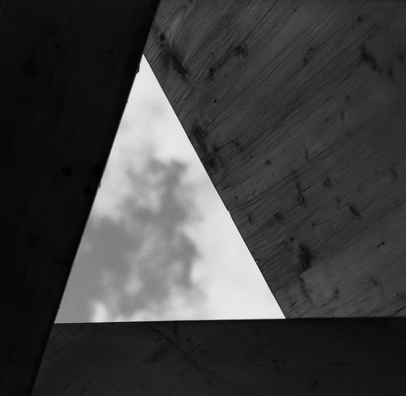 the-tree-mag-photos-by-olivia-stonner-110.jpg