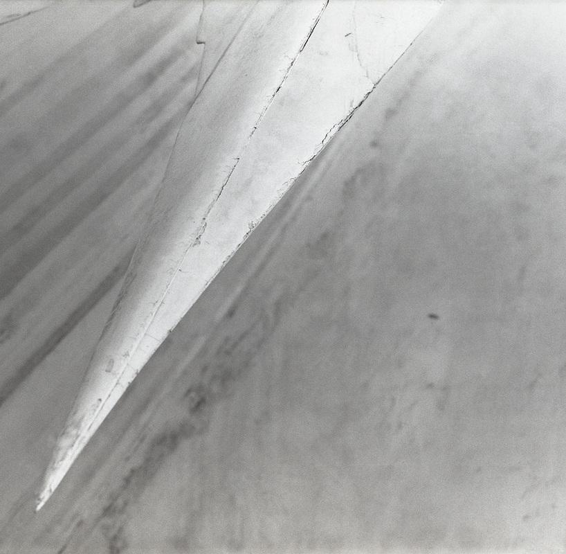 the-tree-mag-photos-by-olivia-stonner-150.jpg