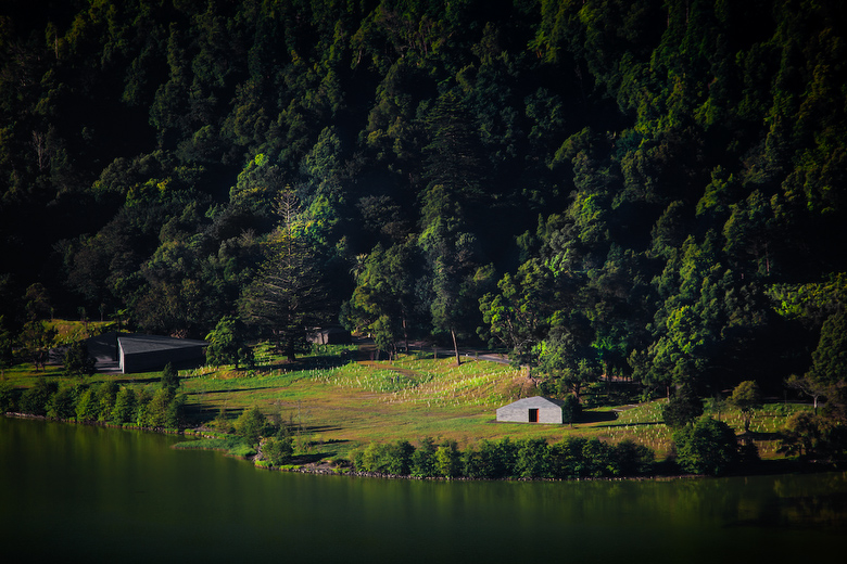 the-tree-mag-building-in-lagoa-das-furnas-by-aires-mateus-20.jpg
