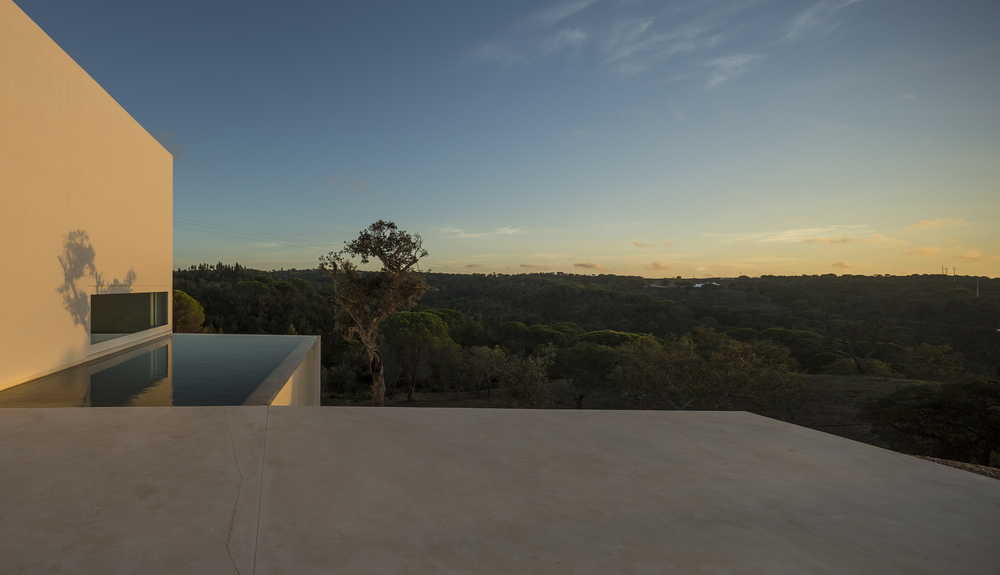 the-tree-mag-house-in-fontinha-by-manuel-aires-mateus-sia-arquitectura-70.jpg