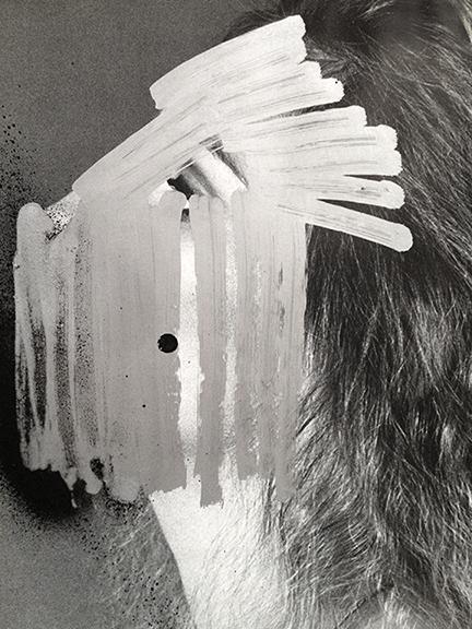 the-tree-mag-Jesse Draxler-130.jpg