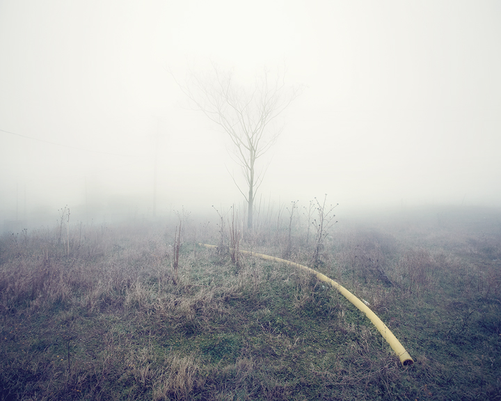 the-tree-mag-Peter Zeglis-20.jpg