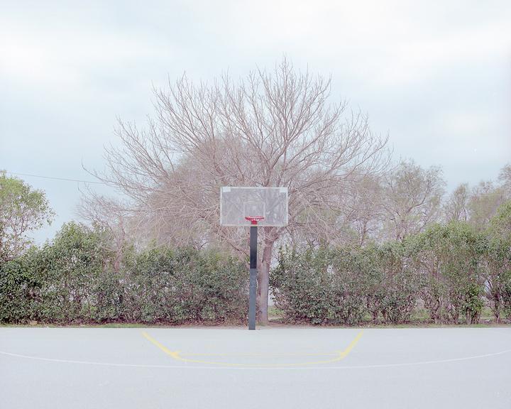 the-tree-mag-Peter Zeglis-140.jpg