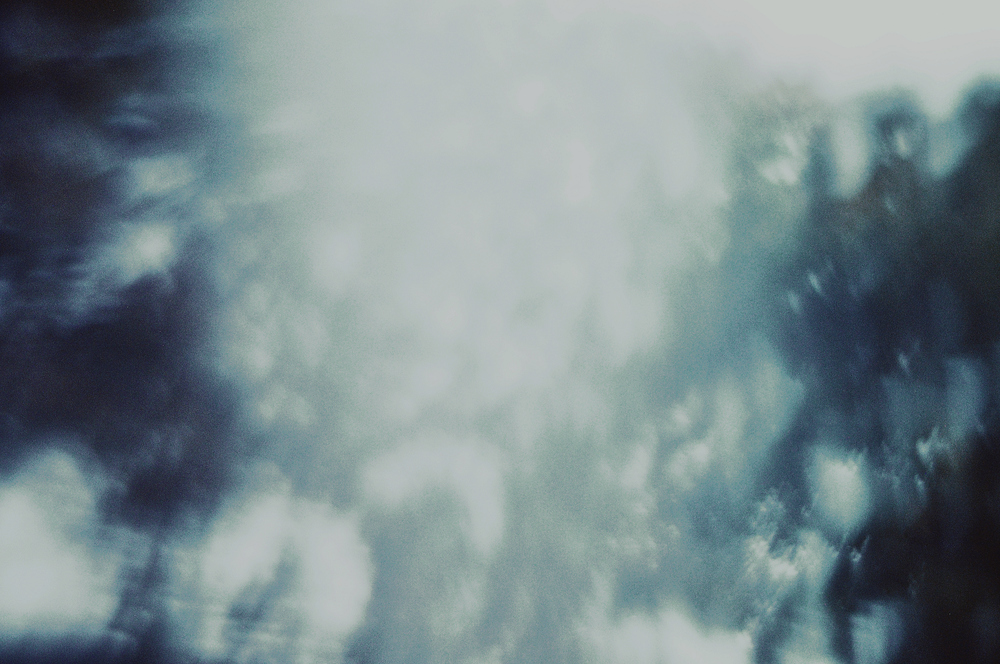 the-tree-mag_amber-ortolano_170.jpg