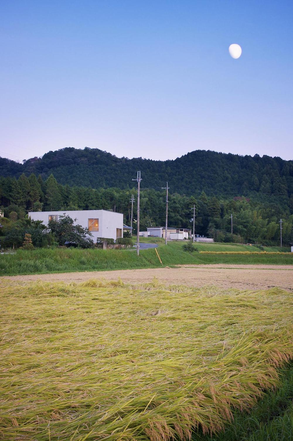 the-tree-mag_4-house-by-kimura-matsumoto_10.jpg