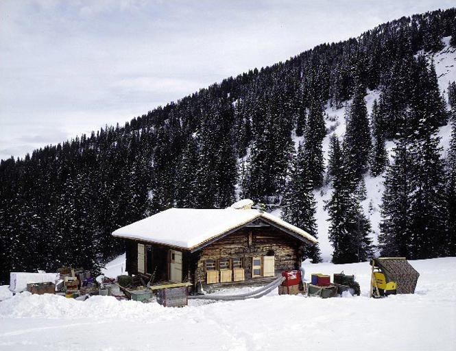 the-tree-mag_alpine-hut-blattistafel-near-gstaad-by-afgh_150.jpg