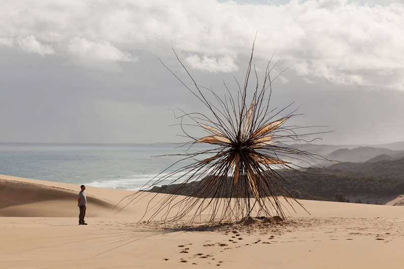 the-tree-mag_spinifex-by-corey-thomas_60.jpg