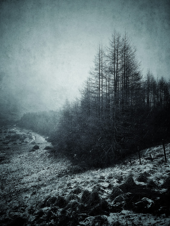 the-tree-mag_iphoneonly-Etive-by-Julian-Calverley_30.jpg
