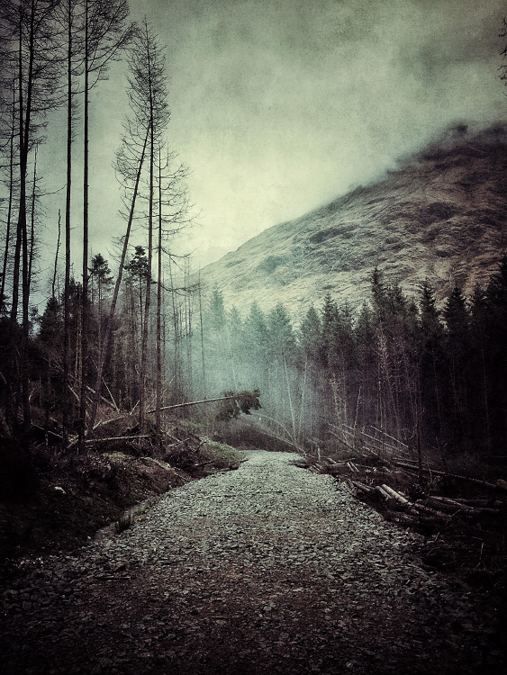 the-tree-mag_iphoneonly-Etive-by-Julian-Calverley_100.jpg